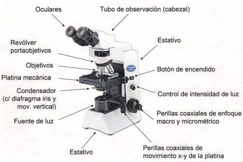 Microscopio de laboratorio quimico